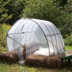 How Do I Best Use My Mini Polytunnel in a Cold Climate? 6 Exclusive Giveaways!