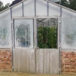 How to Clean Polytunnel Glass? More Discovered!