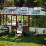 What To Grow In A Hobby Polytunnel For Beginners?