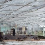 How To Choose Polytunnel Flooring Correctly? 3 Special Factors!