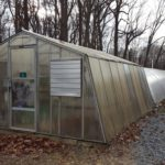 How To Convert A Polytunnel Into A Chicken Coop? Benefits Explained!