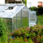 Which Way Should A Hobby Size Polytunnel Face? Pros and Cons!