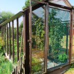 How To Make Money From A Hobby Polytunnel? 6 Differences Discovered!