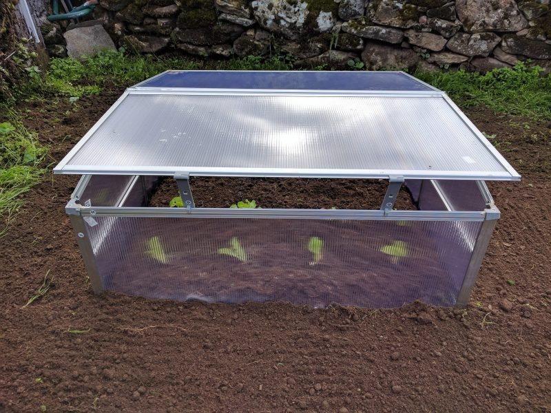 What Temperature Should I Keep Vegetable Plants In The Small Greenhouse