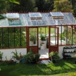 How To Setup A Small Polytunnel In Surrey? New Tips Disclosed!