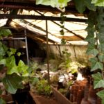 How Do You Hang Shade Cloth In A Hobby Polytunnel? 3 Effective Ways!