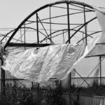 How To Protect Greenhouse From Wind? 3 Bonus Tips!