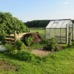 Is An Unheated UK Polytunnel Frost-Free Or Not? 3 Special Tips!