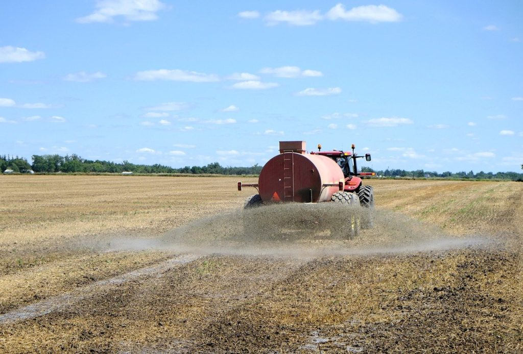How Does the Concentration of Fertilizer Affect Plant Growth