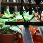How Do You Clean A Grow Light Reflector? 2 Exclusive Steps?