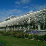 How Much CO2 Do Polytunnels Use? 3 Trust Methods!