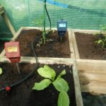 How To Use A pH Meter For Soil? 2 Efficient Methods!