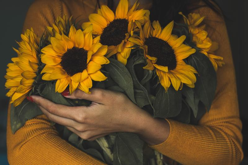 How to Take Care of Cut Sunflowers: 10 Easy-to-Follow Steps