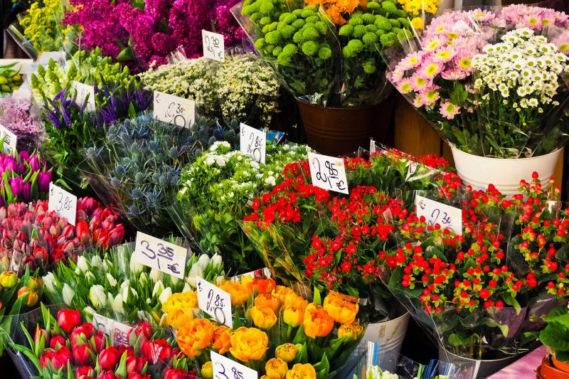 How to Sell Cut Flowers from Your Little Garden or Farm