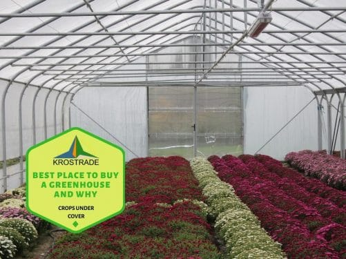 Best-Place-To-Buy-A-Greenhouse-And-Why-owuu54fh88t2ghc03aajpl2s1bwhc8iihkc4zm7b3a