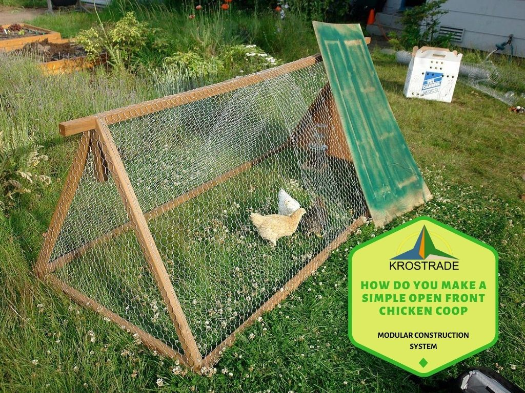 The basic functions of open house chicken coops
