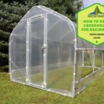 Pros and Cons Of How To Use Polytunnel For Beginners? 6 New Steps!