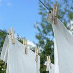 How To Wash A Tent? 8 Bonus Steps!