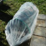 3 Bonus Tips Of How To Grow Herbs In A Mini Polytunnel?