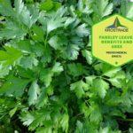 Example Of Parsley Leaves Benefits! 2 Bonus Tips!