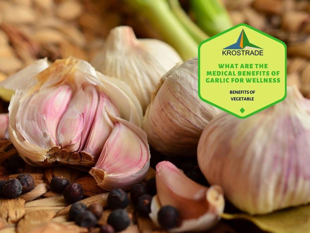 Proven Health Benefits Of Garlic