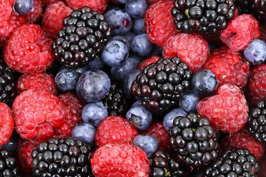 What Berries Grow In Montana