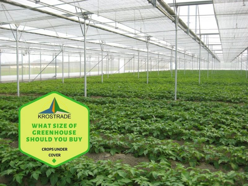 Why to even consider a greenhouse