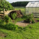 When to Start Mini Outdoor Polytunnel in Highlands Scotland? 3 Proven Tips!