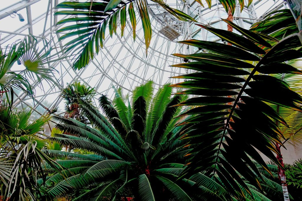 in Spokane WA area how to keep a small greenhouse cool