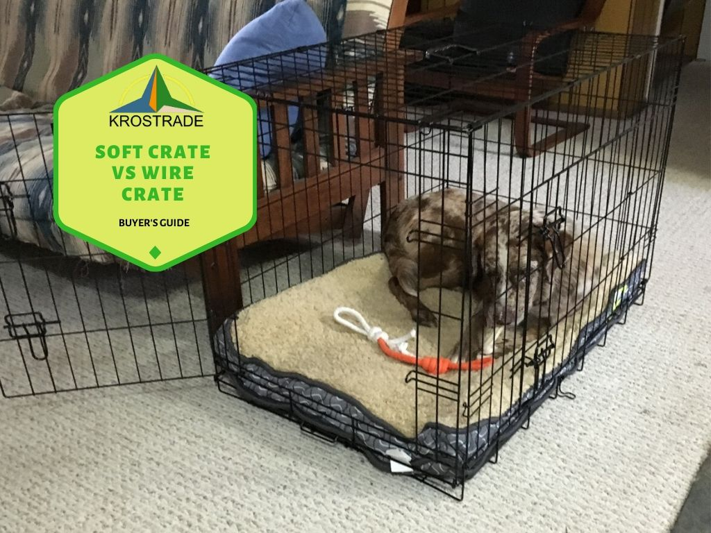 Soft Crate vs Wire Crate. Buyer's Guide