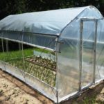 What Is A Good Size Hobby Polytunnel For You