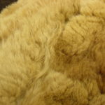 5 New Steps Of How To Make A Fur Blanket?